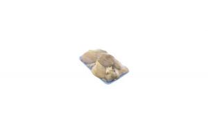 Ciuperci PLEUROTUS, caserola de 500gr