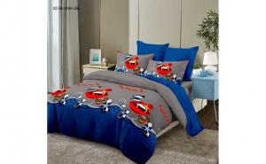 Set lenjerie de pat - 6 piese-100% romaneasca