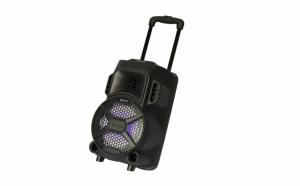 Boxa portabila 100W, Tip Troler, ZQS-8101 cu Microfon, Bluetooth Radio Fm si Telecomanda