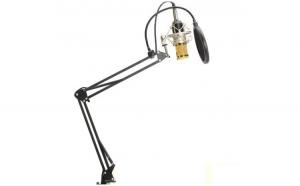 Microfon Profesional de Studio