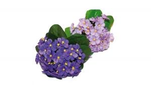Buchet flori artificiale, aprox 30