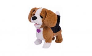 Catelusul beagle Zigo cu functii