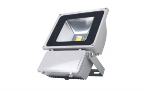 Proiector casa LED 100W 28.5 x 23 220V
