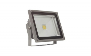 Proiector casa LED 50W 28,5 x 23 cm 220V
