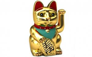 Pisica norocoasa, Produse Noi