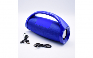 Boxa Portabila Cu Lanterna TG-136