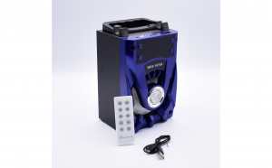 Boxa Portabila Cu MP3, TF/USB, Bluetooth, Telecomanda, Radio FM, Big Sound WKS-1070A