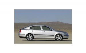 Perdele interior Skoda Octavia 2 hatchback/sedan 2004-2013
