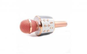 Microfon wireless sistem karaoke