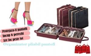 Geanta organizator pentru pantofi la doar 19 RON in loc de 49 RON