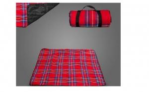 Patura picnic