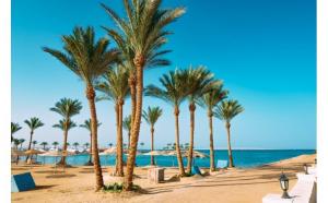 Sejur insorit in Egipt - Reducere Early Booking - Cazare la Marlin Inn Azur Resort 4*, all inclusive, zbor dus-intors
