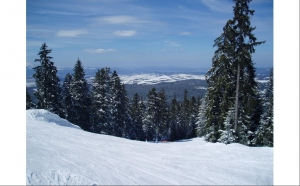 Borovets MTS TRAVEL - TO HTC