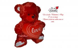 Urs Valentine's Day 37 cm cu mesaj, Ziua indragostitilor, Voi doi