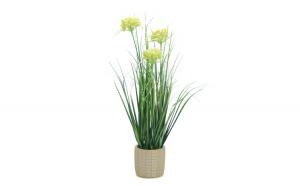 Floare decorativa in ghiveci, cu iarba,