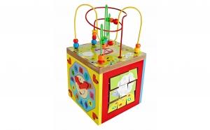 Cub activitati Montessori 5 in 1