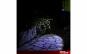 Lanterna LED COB  Zoom XT160, 160lm