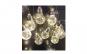 Ghirlanda cu 10 becuri LED, instalatie de interior/exterior, 4 metri ALB CALD