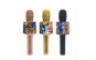 Set - Microfon Karaoke Wireless cu