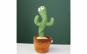 Jucarie Cactus Dansator