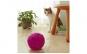 Jucarie rotativa pisici