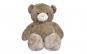 Urs de plus gigant 2,2m Kota Baby, Maro