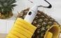 Dispozitiv de taiat ananasul in felii spiralate - util in bucataria ta