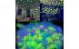 Set 100 stelute fosforescente
