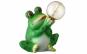 Lampa solara pentru gradina - broasca verde cu glob