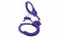Accesorii Purple