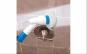 Perie profesionala electrica pentru curatarea faiantei si gresiei