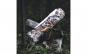 Cutit briceag 24 cm, model Dead Walker