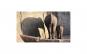 Tablou Canvas cu Animale 953 80 x 140