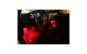 Kit lumini ambientale auto interior 7 culori rgb smd 12v music controler JstA