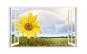 Sticker decorativ, Fereastra 3D, Floarea