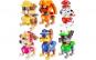 Set piese de constructie Patrula catelusilor (6 figurine) lego