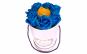 Cadou femei cu trandafir criogenat galben, trandafiri de sapun albastrii si ceas de mana fashion galben