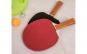 Set portabil de tenis de masă-Ping Pong