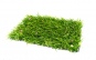 Gazon artificial, aspect iarba naturala, Verde, 60x40 cm