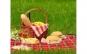 Patura pentru picnic