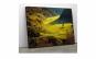 Tablou Canvas Toamna in Munti 50 x 75 cm