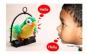 Papagal vorbitor