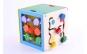 Cub educativ Montessori 5 in 1