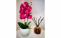 Aranjament orhidee silicon in ghiveci