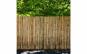 Gard, paravan trestie natural 1,5 m x 3