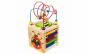 Cub educativ