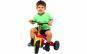 Tricicleta multicolora cu pedale