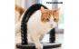 Suport de Ascutit Gheare pentru Pisici si Cerc de Masaj InnovaGoods