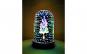 Decoratiune Luminoasa Tip Glob Cylindrical Mirror Light cu Baterii/USB 15 cm Multicolor