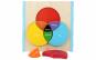 Puzzle 3D Montessori, IQ potrivire cercuri din lemn, 8 piese, WD2064